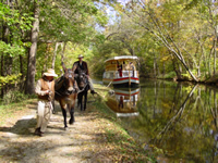 Mule-Drawn Canal Boat Ride