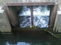 Waste Weirs