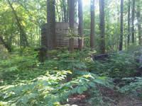 Maryland Mine Ruins
