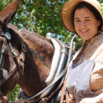 Mules are the engines of the canal boats and the heart of the park. Visitors are welcome to meet them. Credit: Chesapeake & Ohio Canal National Historical Park