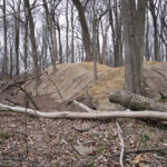 The C & O Canal NHP has worked hard to try and stabilize the earthen parapet walls of Fort Duncan. By removing trees and planting grasses, the mounded dirt used for the walls will be protected from erosion. Credit: C&O Canal National Historical Park