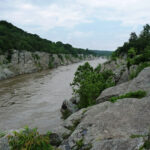 An upstream glance gives no indication of the massive falls less than a mile up the Potomac River. Credit: C&O Canal Trust