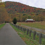 The Western Maryland Rail Trail is a prime location for enjoying fall colors. Credit: Department of Natural Resources