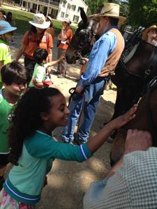 petting-mule