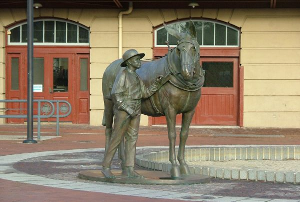 Mule-Statue-at-Canal-Place-Tina-Yoder
