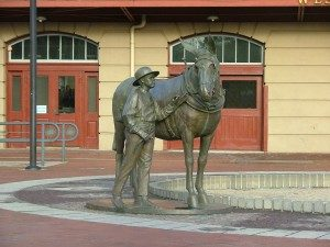 Mule Statue at Canal Place - Tina-Yoder