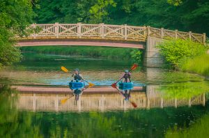 Kayak duo under the footbridge - Mike Mitchell