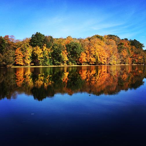 The Beautiful Fall Foliage of the C&O Canal