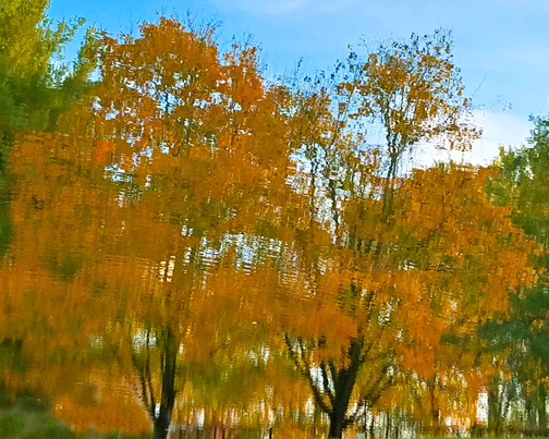 Reflections in the waters of the C&O Canal at Lock 99 - MJ Clingan