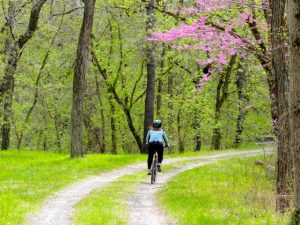 A biker rides the towpath.