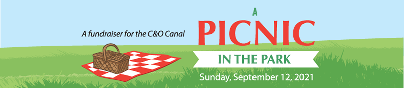 A Picnic in the Park Sunday, September 12, 2021